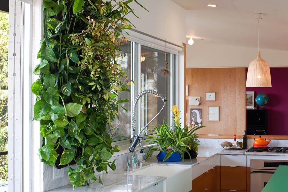 las mejores imagenes de jardines verticales para interiores seleccion de plantas perfectas