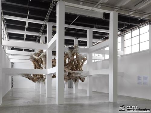 Decoración con raices gigantes en interiores (5)