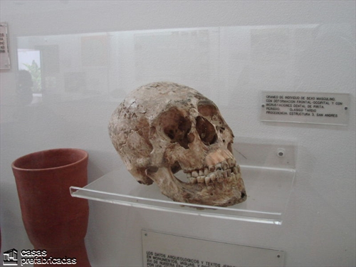 Sitio arqueológico San Andres  (8)